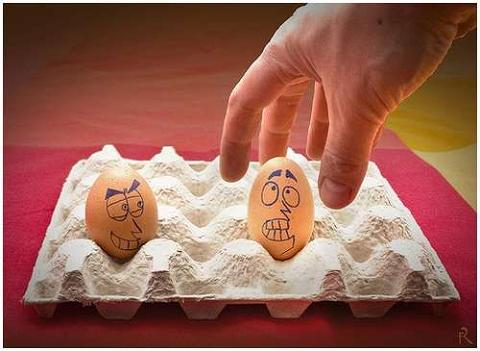 huevos11