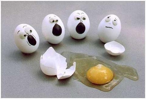 huevos14