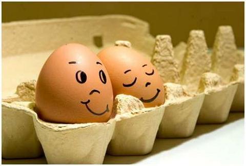 huevos17
