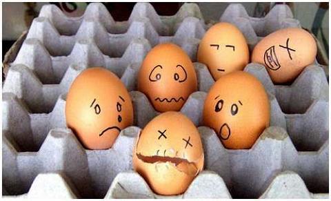 huevos21