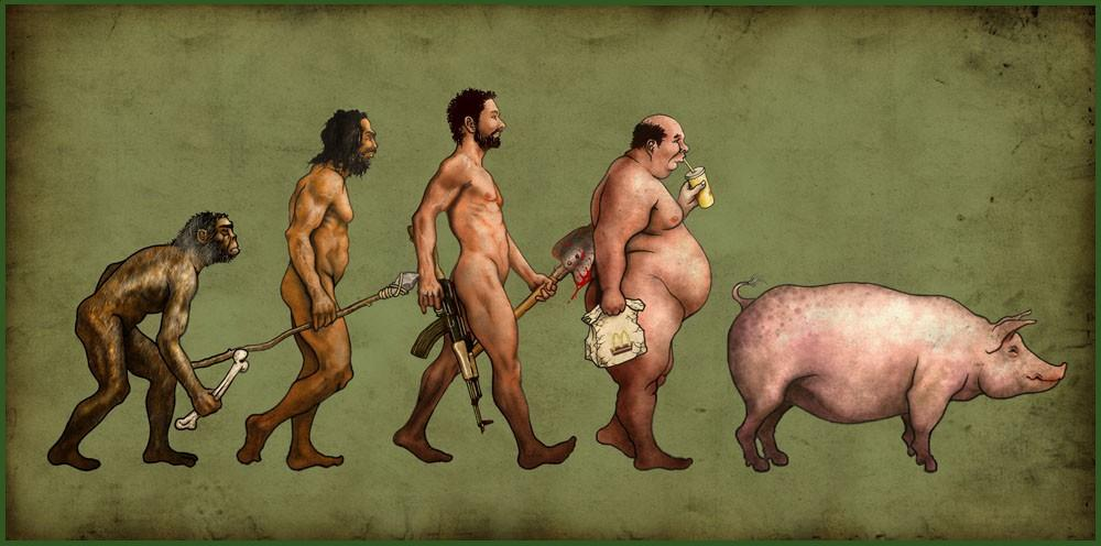 evolucion2.jpg