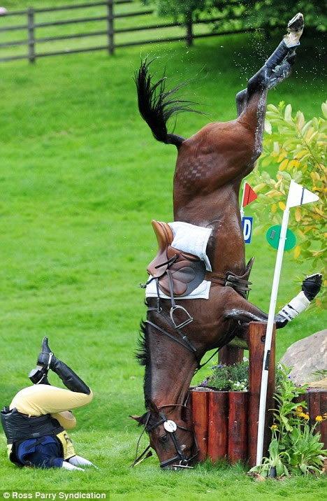caballo arema 2 Accidentes de caballos