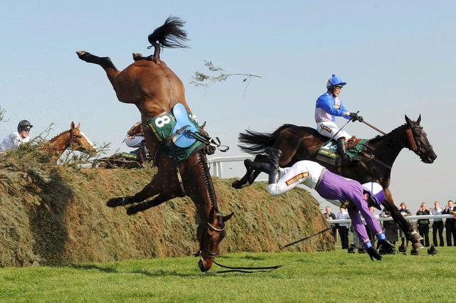 caballo arema 5 Accidentes de caballos
