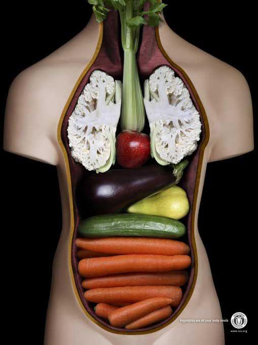 cuerpo vegetariana Cuerpo de una vegetariana