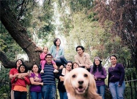 CHISTES,BROMAS E IMÁGENES GRACIOSAS-https://www.blogdehumor.com/wp-content/2010/06/perro_foto.jpg