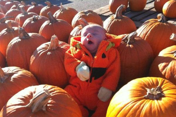 fotos halloween