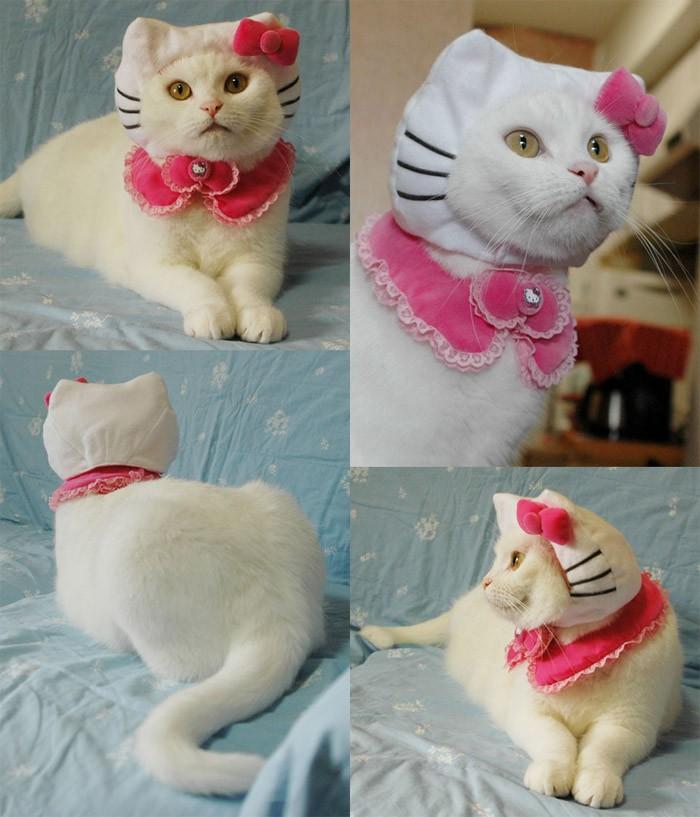 Hello Kitty en la vida real