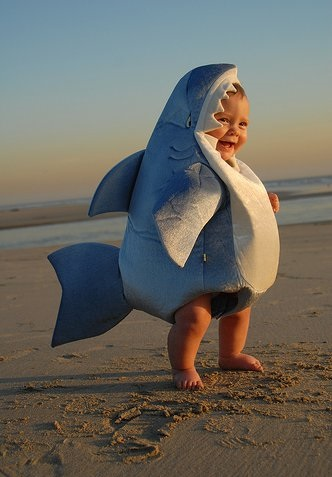 bebe disfrazado de tiburon