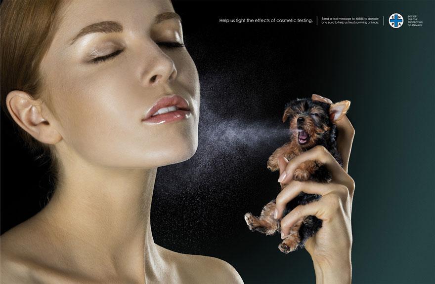 anuncios con animales para denunciar algunos comportamientos 10