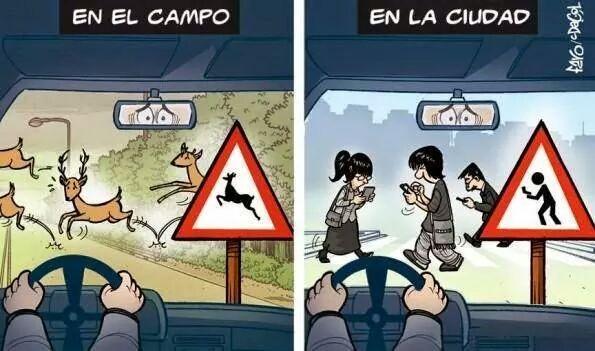 peligro conducir