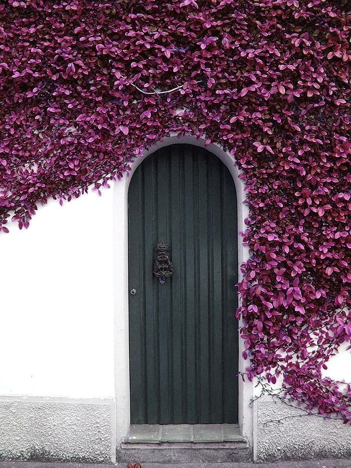 30 puertas muy especiales 11