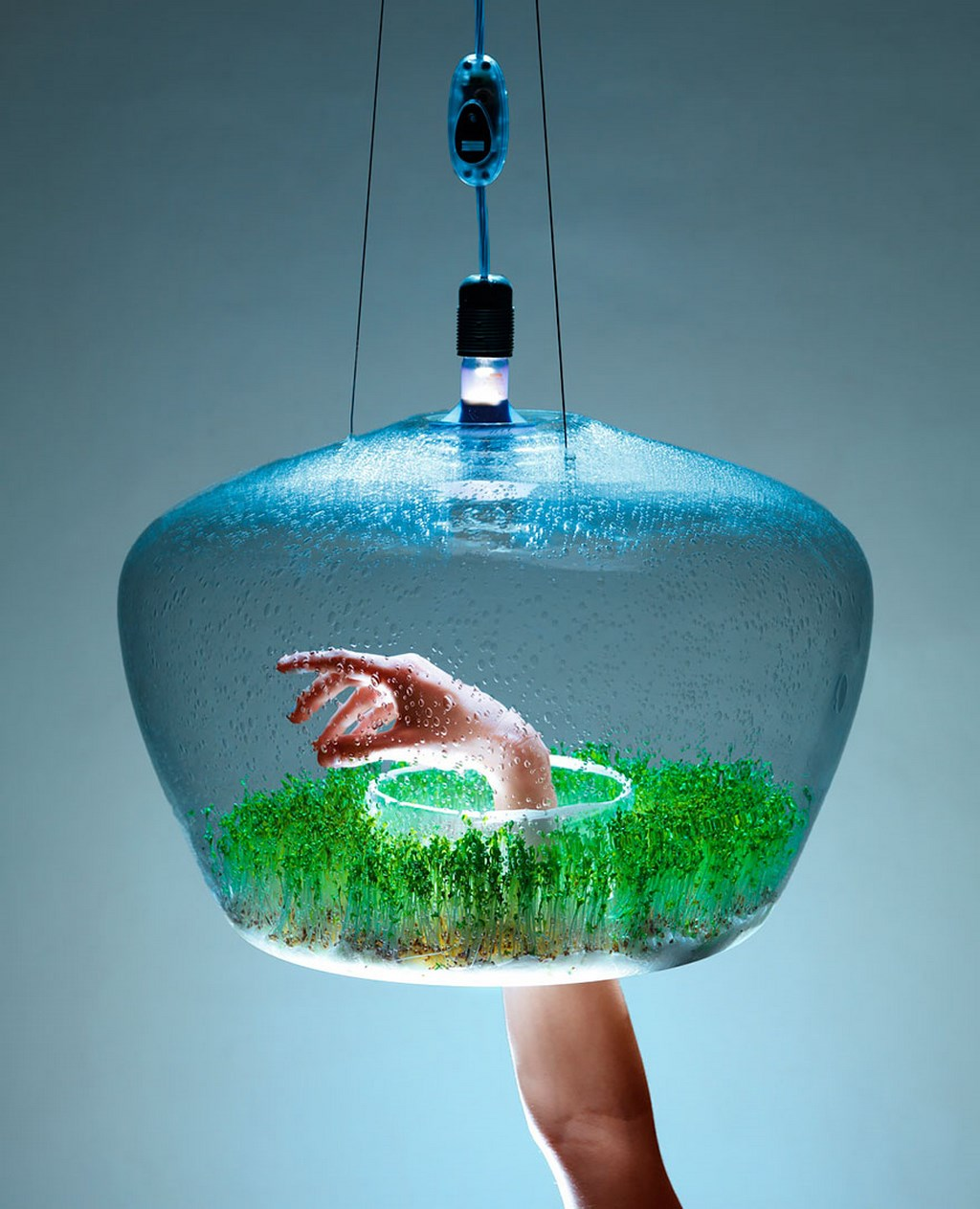 Ideas inspiradas en la naturaleza 32