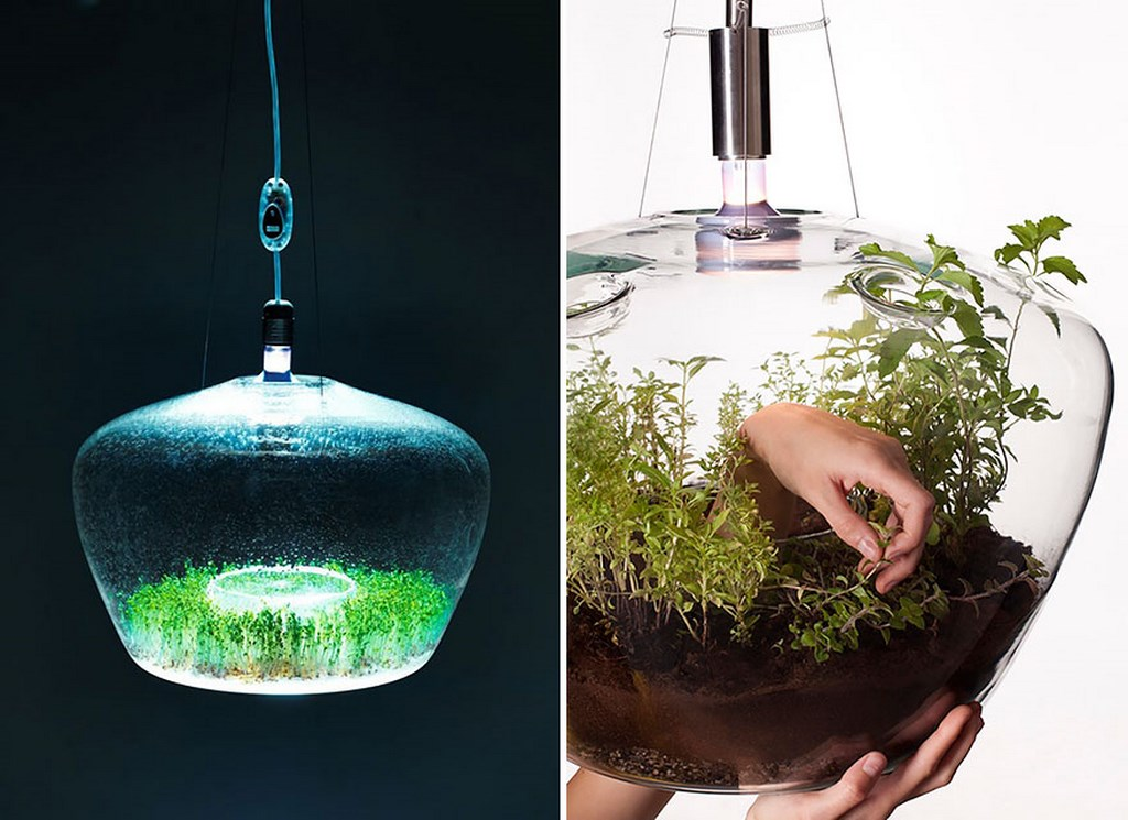 Ideas inspiradas en la naturaleza 33