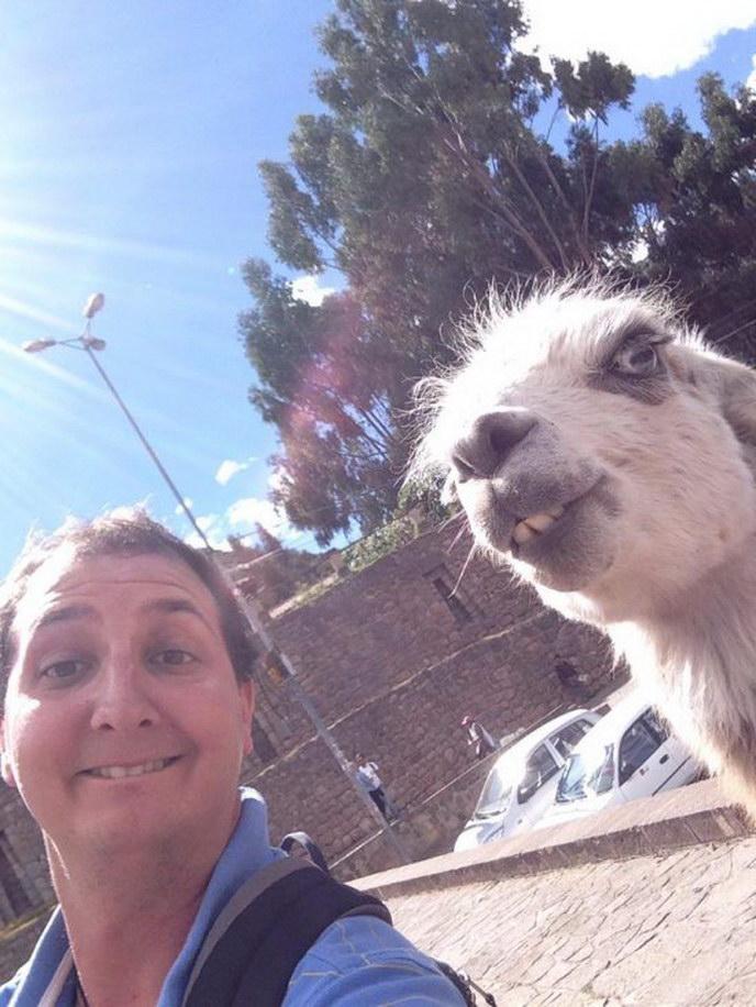 selfie con una llama
