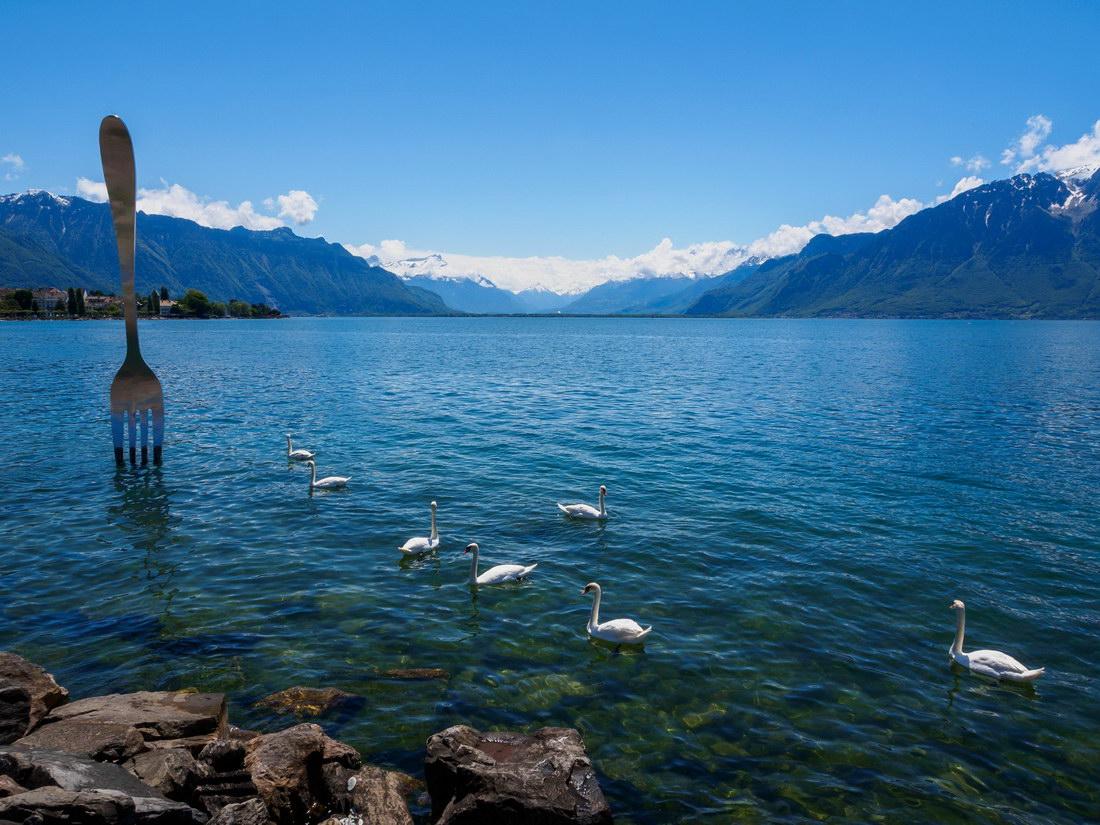 tenedor en un lago