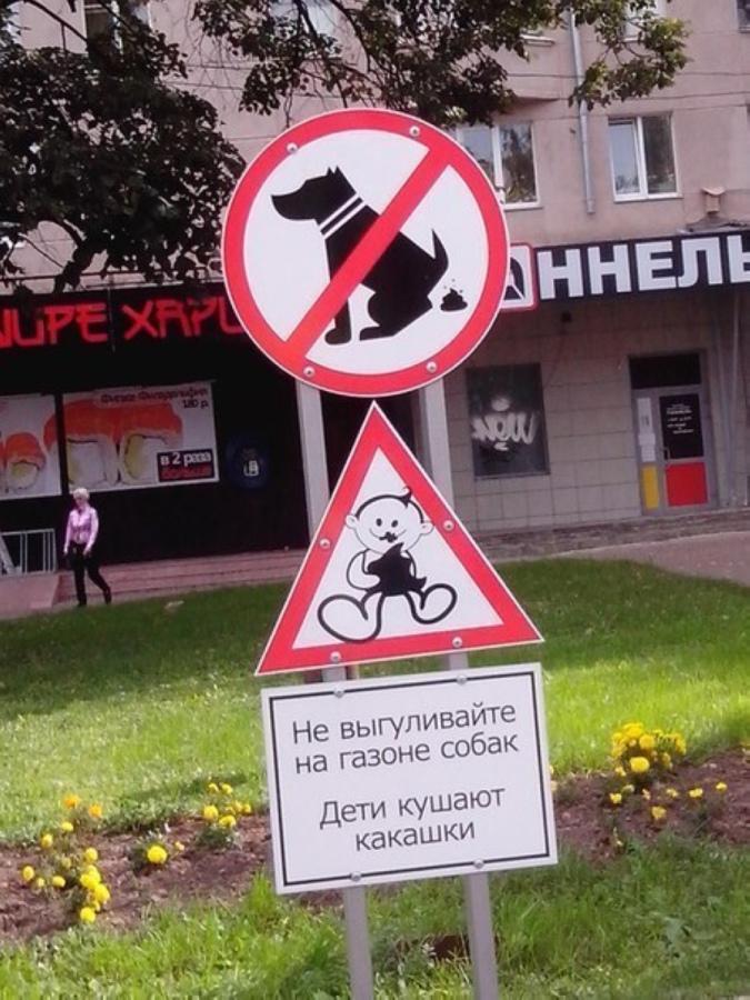 prohibido que los perros caguen