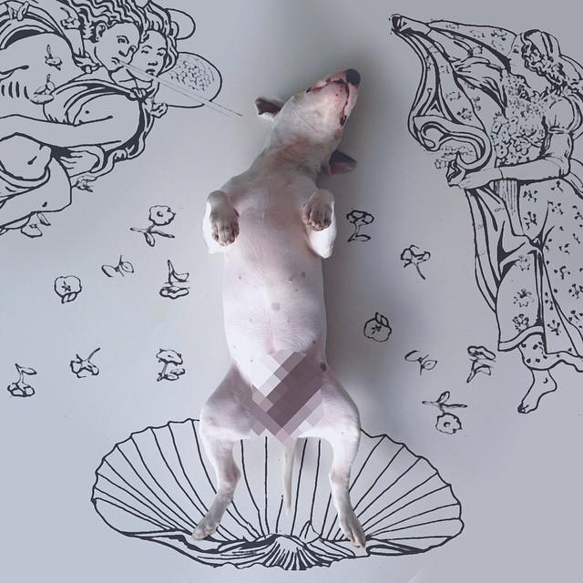 ilustraciones bull terrier 12