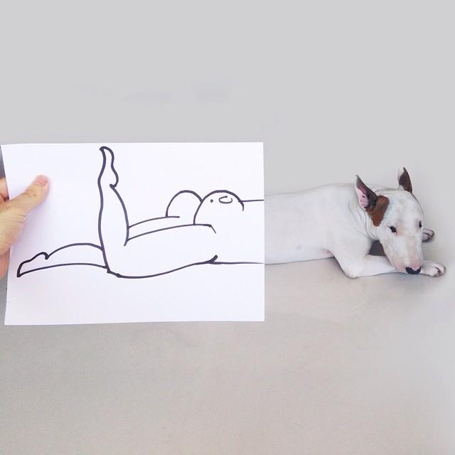 ilustraciones bull terrier 3