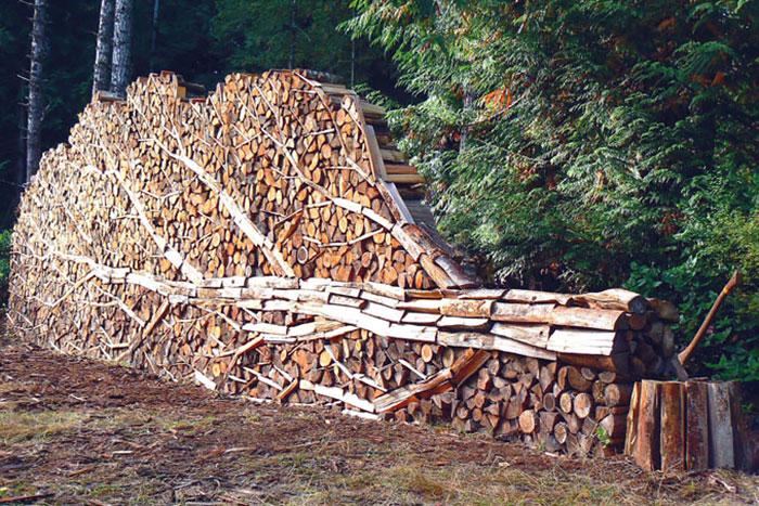troncos almacenados con arte 2