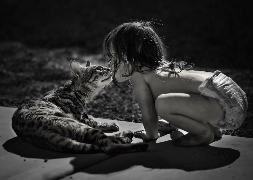 gatos y peques 10