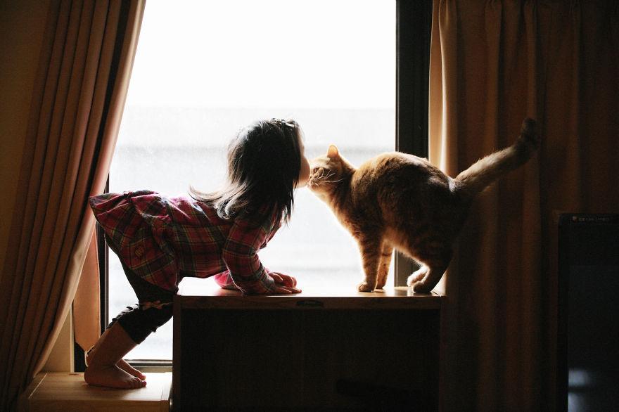 gatos y peques 14
