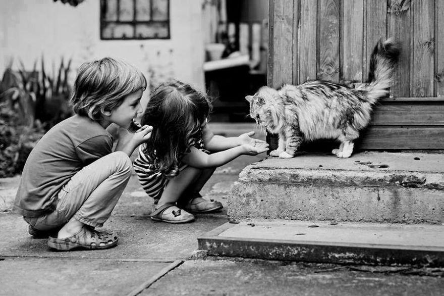 gatos y peques 17