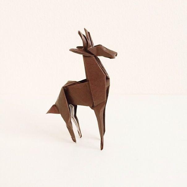 origami 19