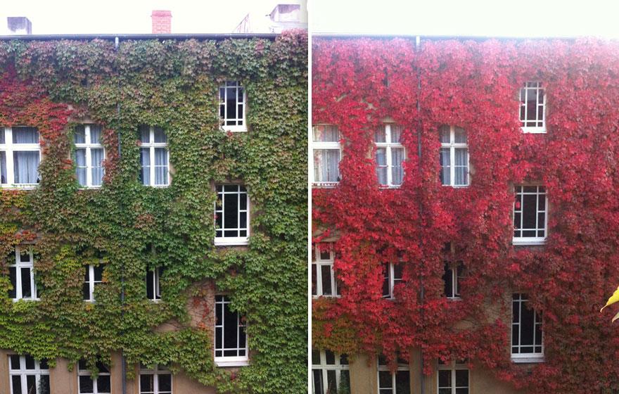 paisajes antes y despues 3