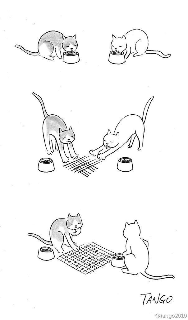divertidas ilustraciones con gatos 2