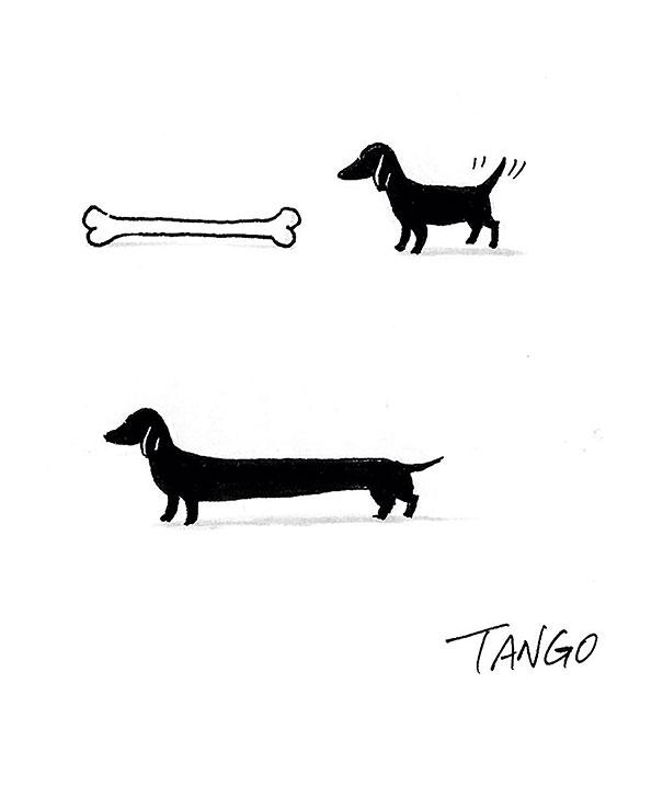 divertidas ilustraciones con gatos 3