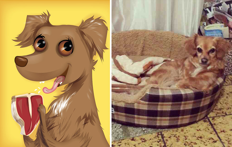 divertidas ilustraciones animales 13
