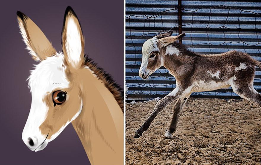 divertidas ilustraciones animales 16