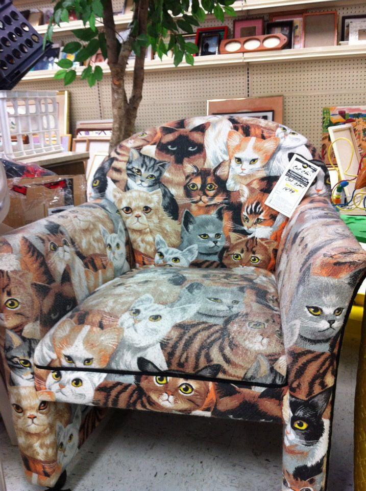 sofa gatuno