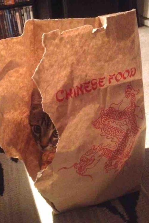 comida china poco hecha