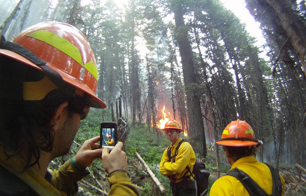 bomberos profesionales