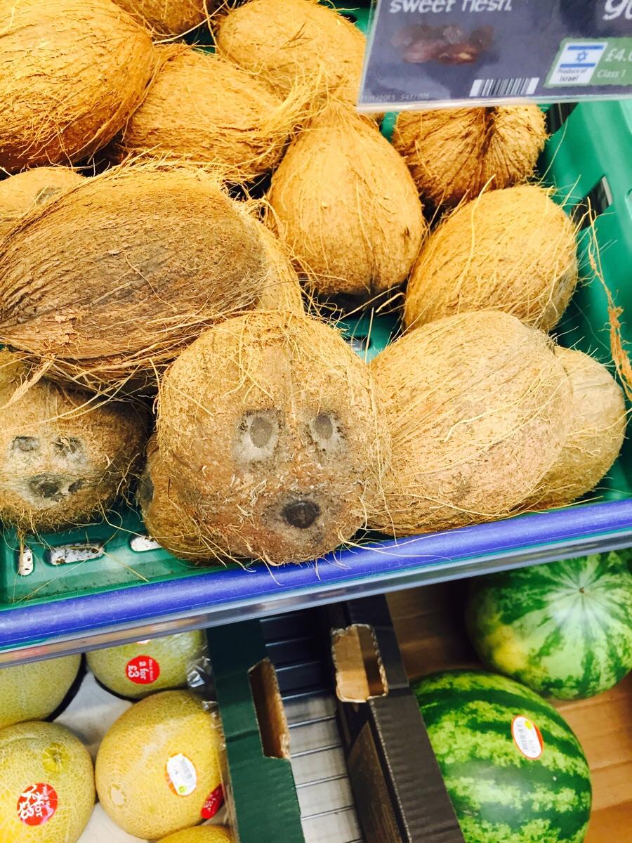 los cocos te vigilan
