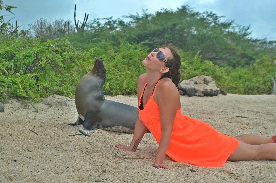 practicando yoga con una foca
