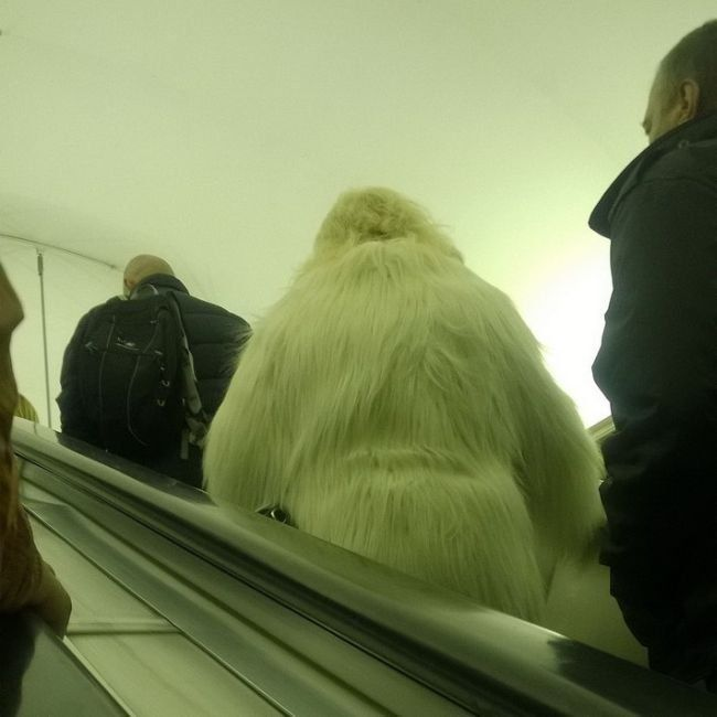 El Yeti sigue vivo