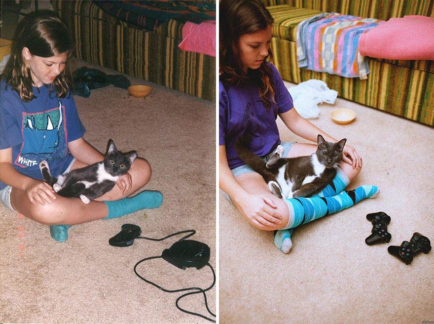 gatos antes y despues 14