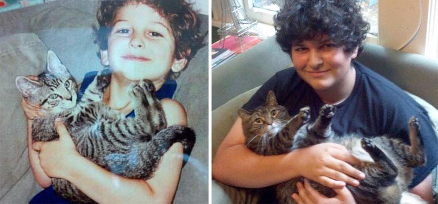 gatos antes y despues 24