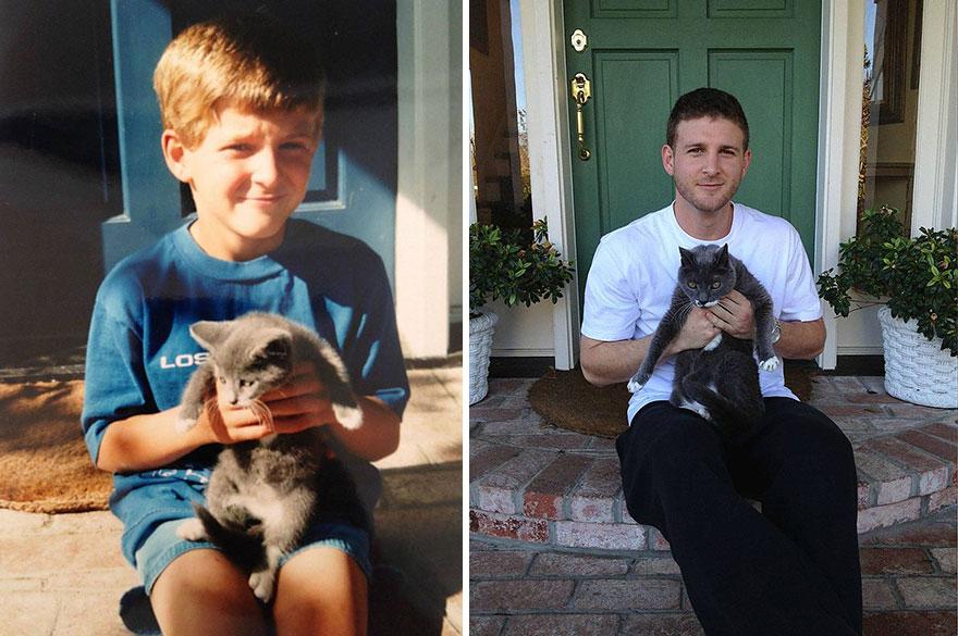 gatos antes y despues