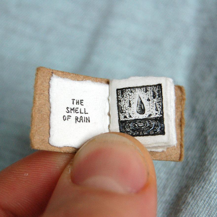 libro en miniatura 2