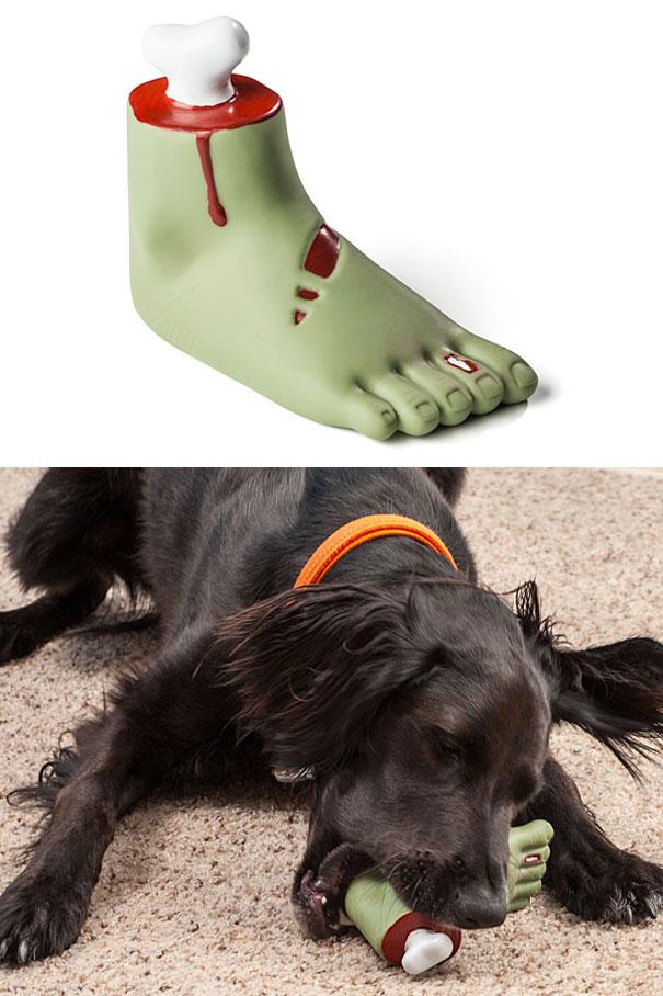 perros graciosos 6