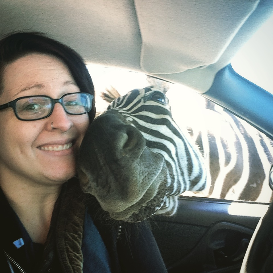 selfie con una zebra
