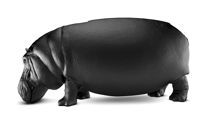 sofa hipopotamo 3