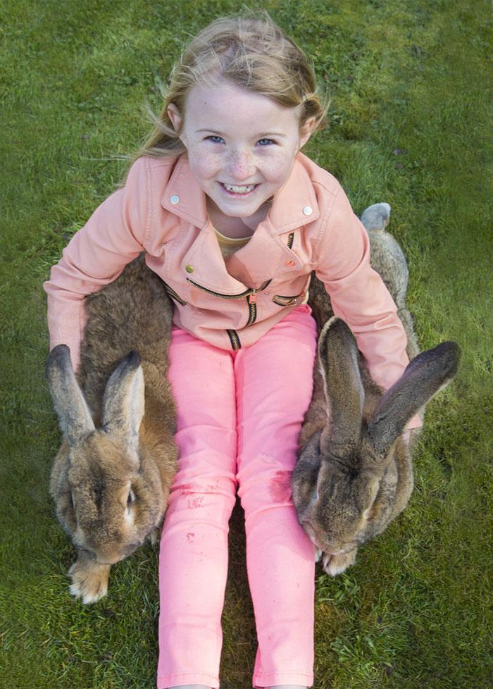 conejo enorme 6