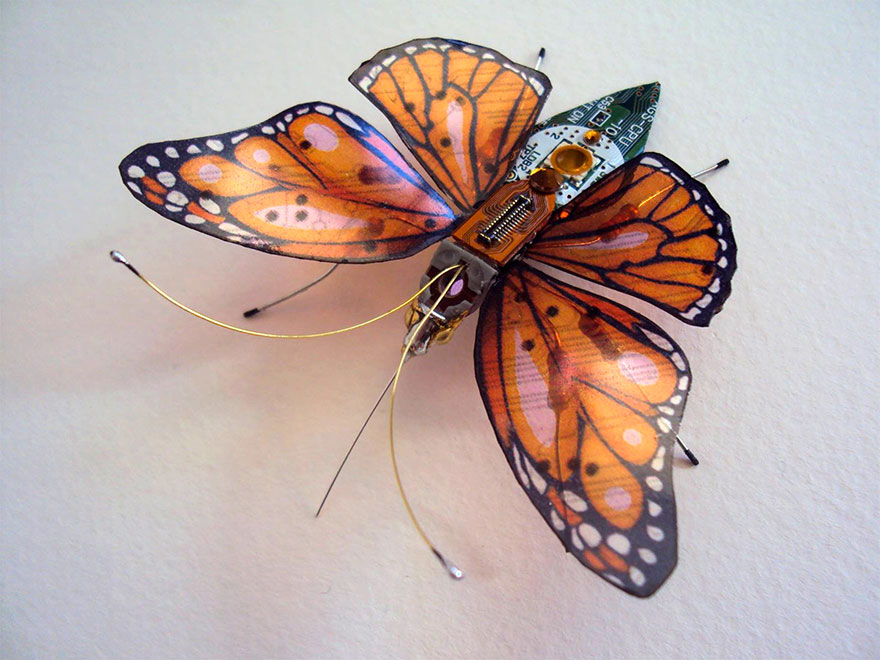 insectos electronicos 13