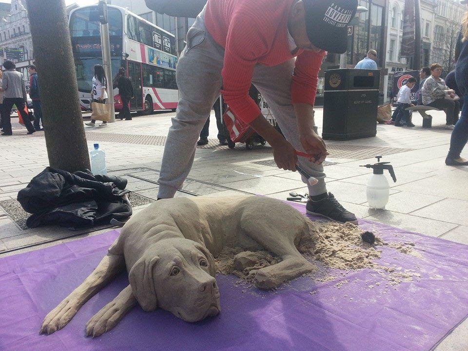 perro de arena