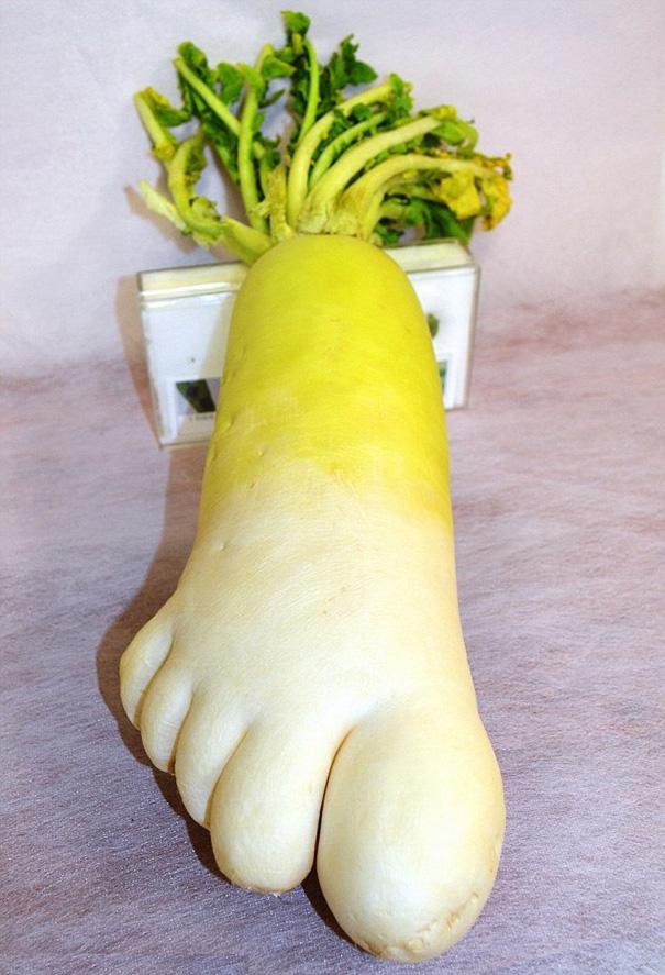 frutas y verduras 17