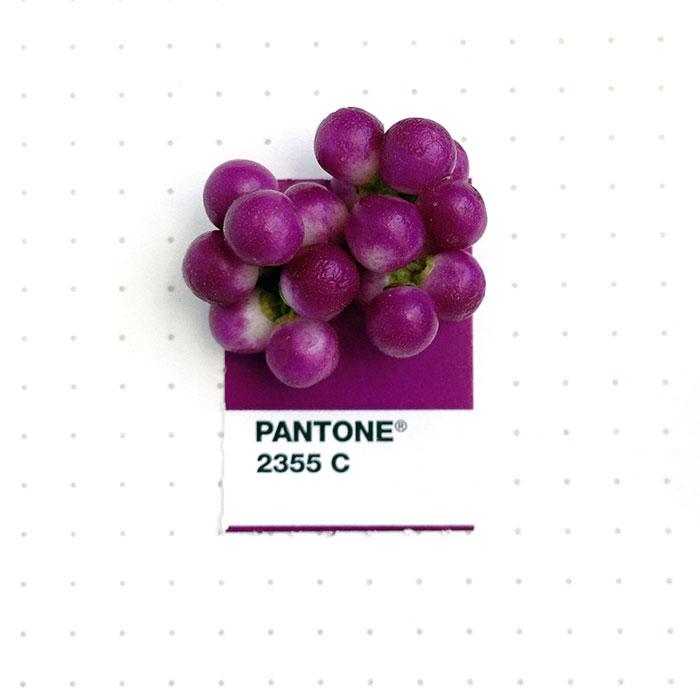 Pantone 2